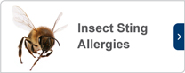 Insect sting allergies
