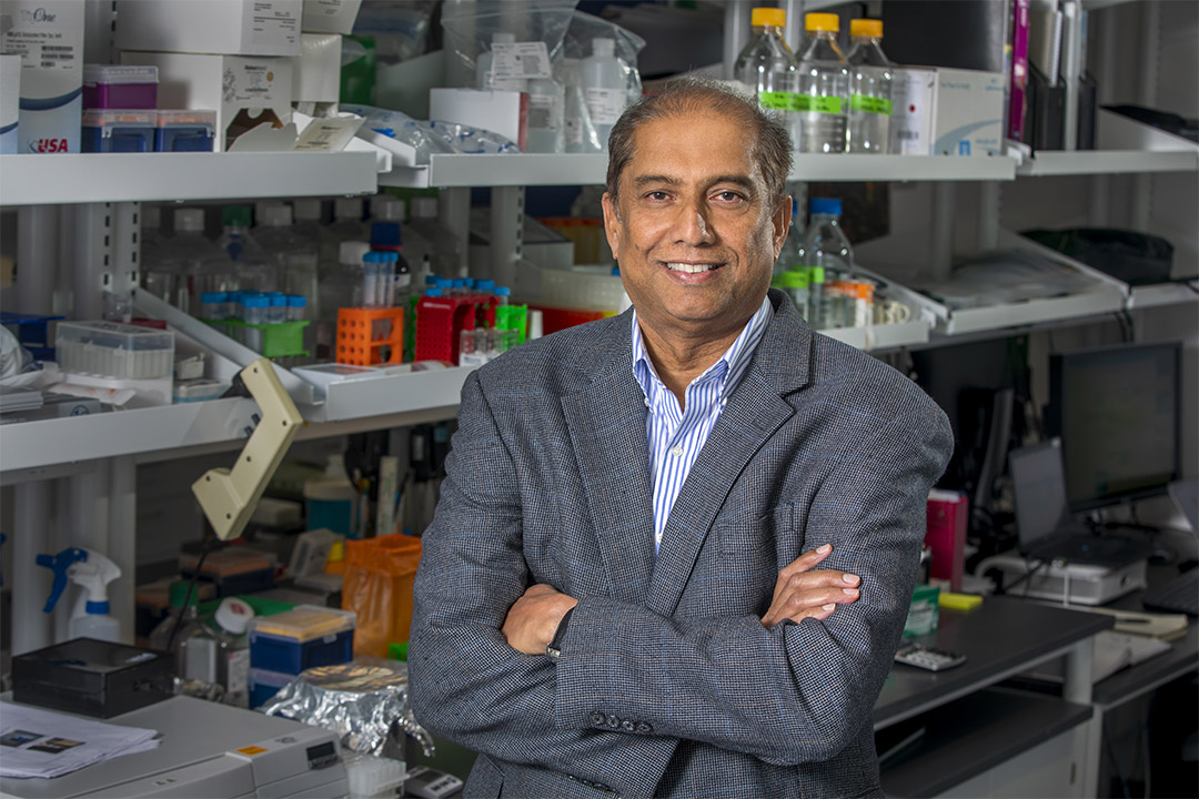 Ranjan Perera, Ph.D., in his lab at Johns Hopkins All Children's Hospital in 2019.